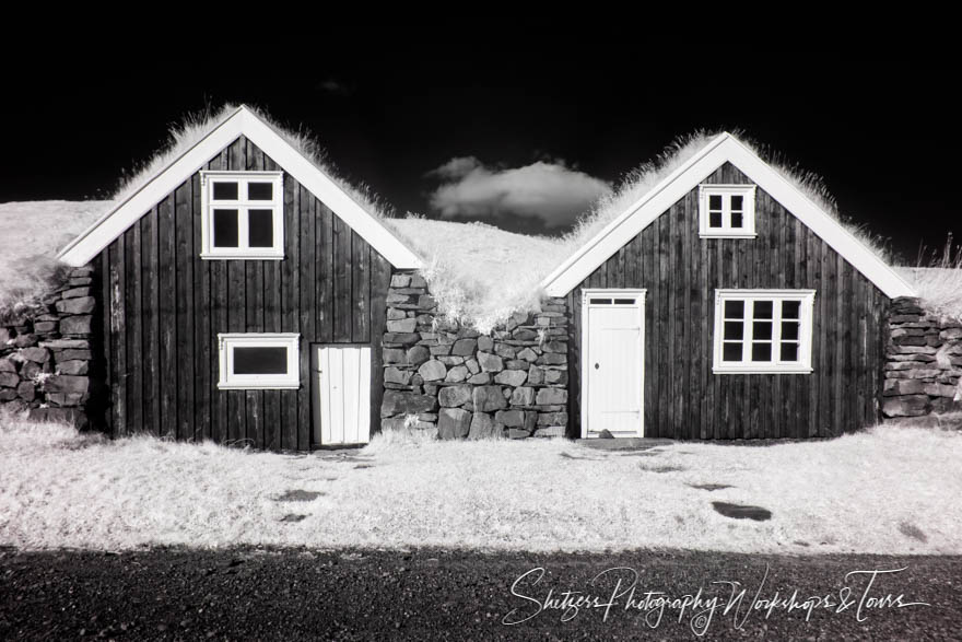 Black and White Sel Farm